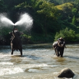 Chiang Mai Tour Package 2 : Chiang Mai cultural heritage   (4 days 3 nights)